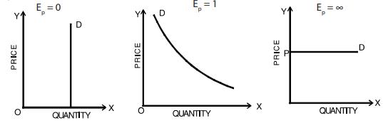 Elasticity of Demand & Price Elasticity CA Foundation Notes | EduRev