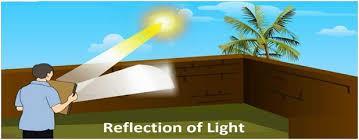 Reflection of light Class 10 Notes   EduRev