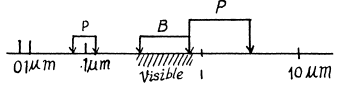 Irodov Solutions: Scattering of Particles. Rutherford-Bohr Atom- 2 Notes | EduRev