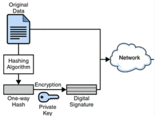 Digital Signatures And Certificates Computer Science Engineering (CSE) Notes | EduRev