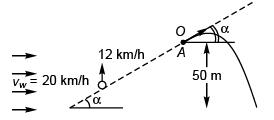 Projectile Motion JEE Main(Part - 1) - Physics, Solution by DC Pandey NEET Notes | EduRev