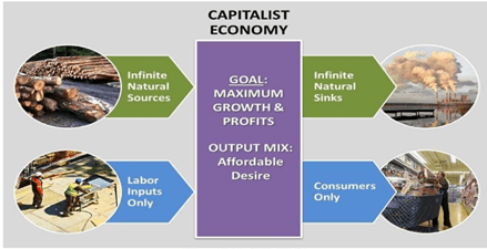 NCERT Solutions - Introduction (Macroeconomics) Commerce Notes | EduRev