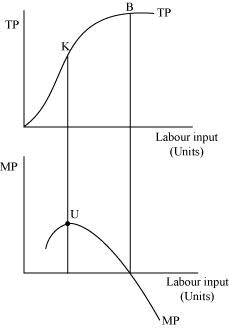 NCERT Solutions - Chapter 3 - Production and Costs, Class 12, Economics | EduRev Notes