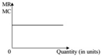 CBSE Sample Question paper - 01 Economics, Class 12 Commerce Notes | EduRev