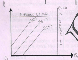 Chapter 9 - Supply And Elasticity Of Supply - Chapter Notes