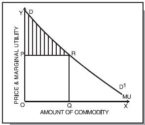 ICAI Notes 2.2 - Theory of Consumer Behaviour CA Foundation Notes | EduRev