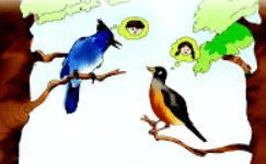NCERT Solutions - Bird Talk Notes | EduRev