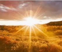 NCERT Solutions - The Magic Garden Notes | EduRev