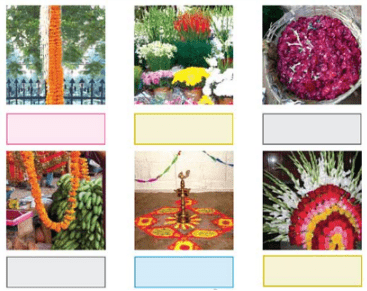 NCERT Solutions - The Valley Of Flowers Class 4 Notes | EduRev
