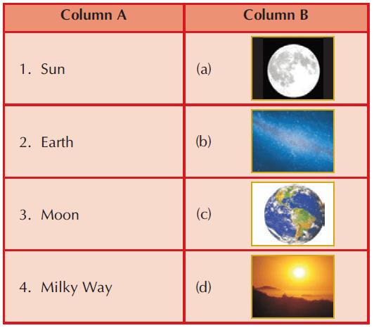 Worksheet: Our Universe Notes   EduRev