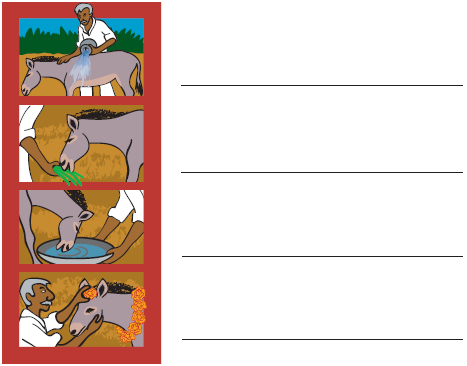 NCERT Solutions - Our Friends – Animals Notes | EduRev