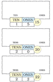 NCERT Solutions - Numbers from Twenty-one to Fifty Class 1 Notes | EduRev
