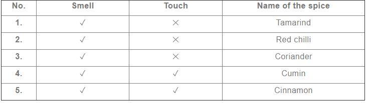 NCERT Solutions - Spicy Riddles Class 4 Notes | EduRev