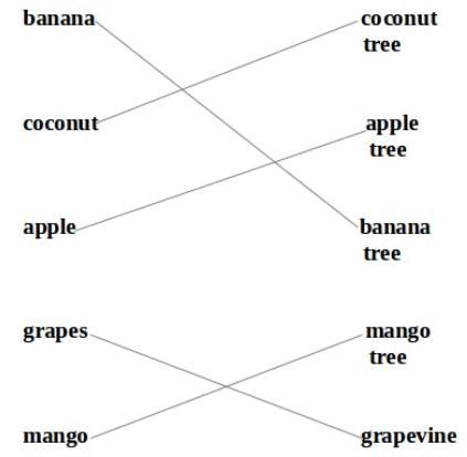 NCERT Solutions - Mittu and the Yellow Mango Class 1 Notes | EduRev