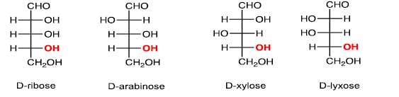 Carbohydrate -Bio-Molecules Chemistry Notes | EduRev