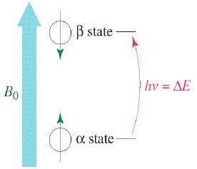 Nuclear Magnetic Resonance Spectroscopy-Spectroscopy