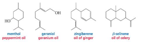 Terpenes -Bio-Molecules Chemistry Notes | EduRev