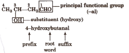 Functional Group, Homologous Series and Nomenclature of Organic Compounds Class 11 Notes | EduRev