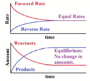 Types of Equilibrium Class 11 Notes | EduRev
