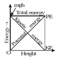 Kinetic Energy and the Law of Conservation of Energy Class 9 Notes | EduRev