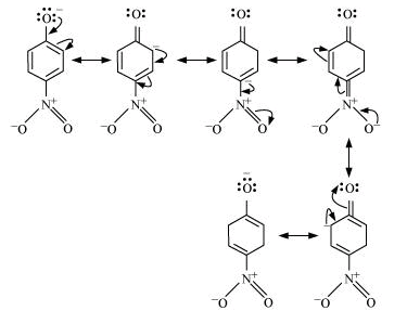 NCERT Solutions - Alcohols, Phenols and Ethers Class 12 Notes | EduRev