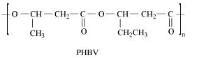 NCERT Solutions- Polymers Class 12 Notes | EduRev