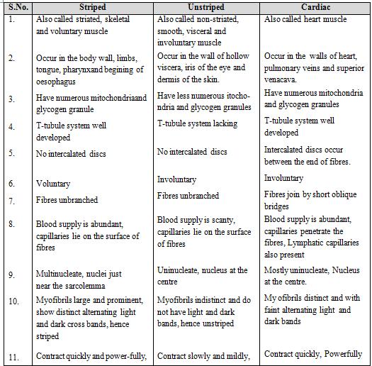 Animal Tissue - Structural Organisation in Animals, Biology, Class