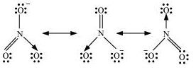 NCERT Solutions - Chemical Bonding & Molecular Structure, Class 11, Chemistry | EduRev Notes