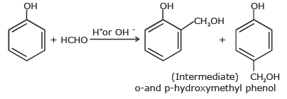 Doc: Polymers of Commercial Importance Class 12 Notes | EduRev