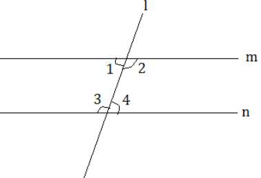NCERT Solutions Chapter 5 - Introduction to Euclid`s Geometry, Class 9, Maths Class 9 Notes   EduRev