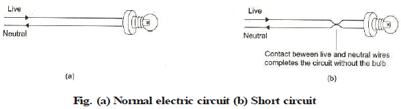 AC,DC Current and Domestic Circuits Class 10 Notes   EduRev