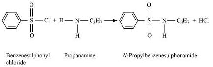 NCERT Solutions - Organic Compounds containing Nitrogen Class 12 Notes | EduRev