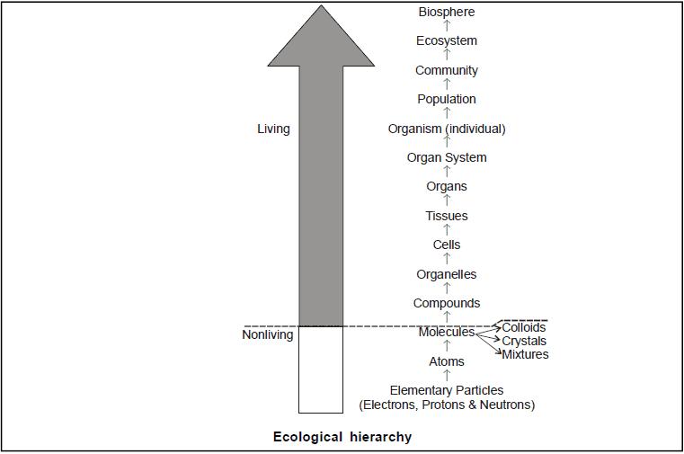 Organism and Environment; Chapter Notes; Class 12; Biology Class 12 Notes | EduRev