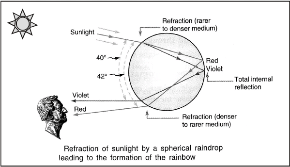 Dispersion of Light - Human Eye and Colourful World, Class 10, Science   EduRev Notes