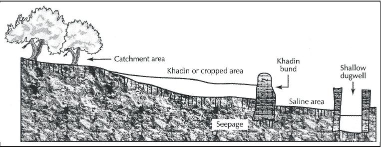 Water Harvesting, Coal and Petroleum Class 10 Notes | EduRev