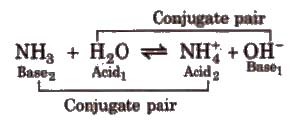 Types of Electrolytes, Acids, Bases and Salts Class 11 Notes | EduRev