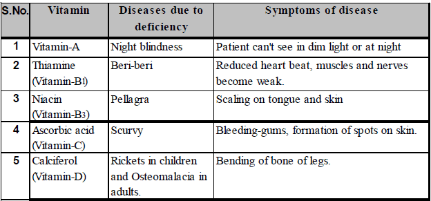 Human Digestive System Class 10 Notes | EduRev
