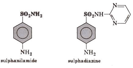 Drugs and their Classification - Chemistry in Everyday Life, CBSE, Class 12, Chemistry   EduRev Notes