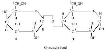 NCERT Solutions - Biomolecules Class 11 Notes | EduRev