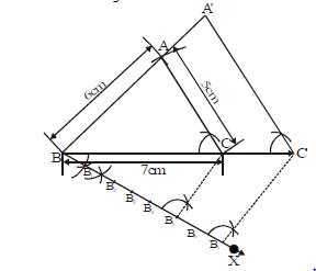 NCERT Solutions - Constructions, Class 10, Mathematics Class 10 Notes | EduRev