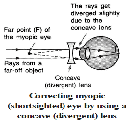 Defects of Vision and Dispersion of Light Class 10 Notes | EduRev