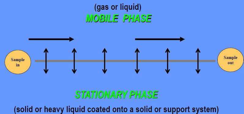 Chapter : Basic Principles of Gas Chromatography, PPT