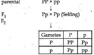 Sample Question Paper (2019-20) - 7 Class 10 Notes | EduRev