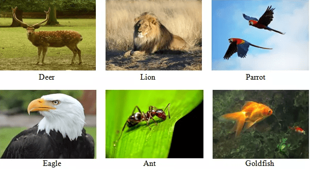 Chapter Notes - 2, Conservation of Plants & Animals, Science, Class 8 | EduRev Notes