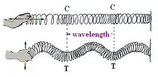 Procedure - To determine the velocity of a pulse propagated through a slinky or a stretched string Class 9 Notes   EduRev