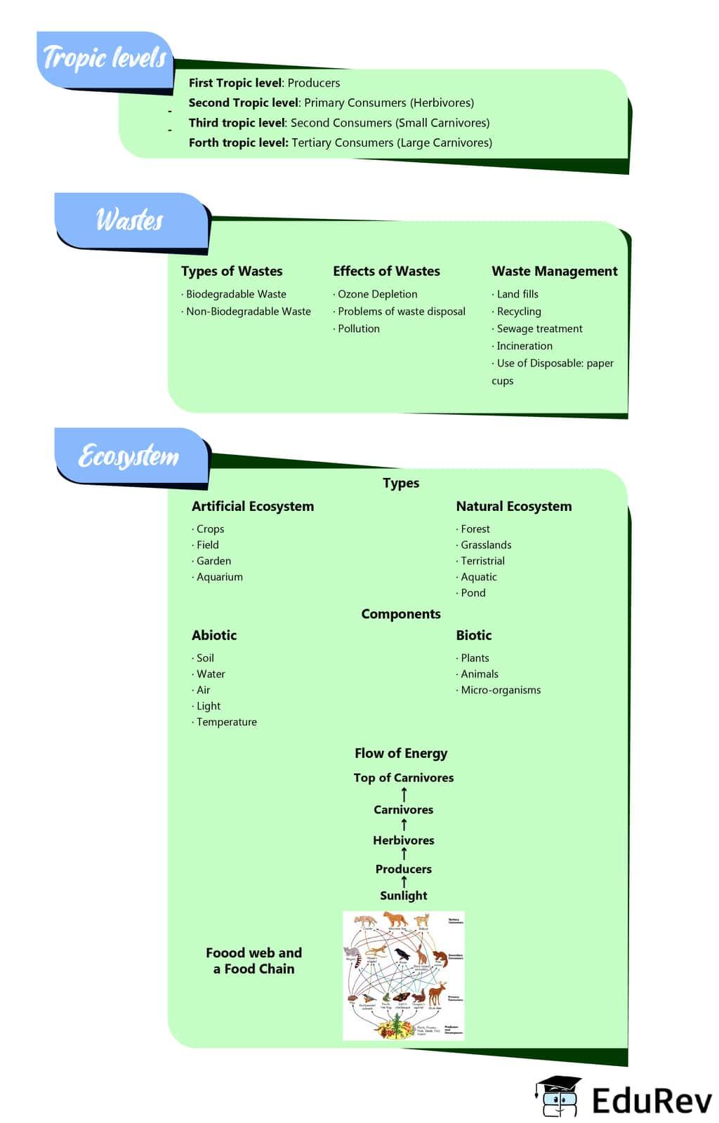 Mindmap: Our Environment Class 10 Notes   EduRev
