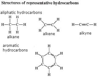 Chains, Branches, Rings and Homologous Series - Carbon and its Compounds, Class 10, Science | EduRev Notes