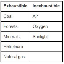 NCERT Exemplar Solutions: Coal & Petroleum Notes | EduRev