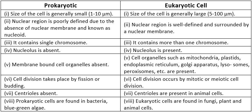 NCERT Solutions - The Fundamental Unit Of Life Class 9 Notes | EduRev