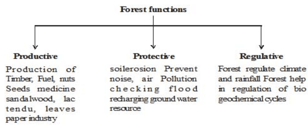 Importance of Managing Natural Resources Class 10 Notes | EduRev